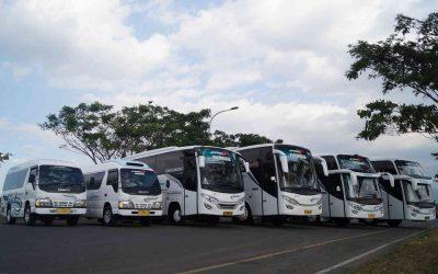 Sewa Unit Marjaya Trans Menjadi Solusi untuk Pariwisata   ( belum ada rating )