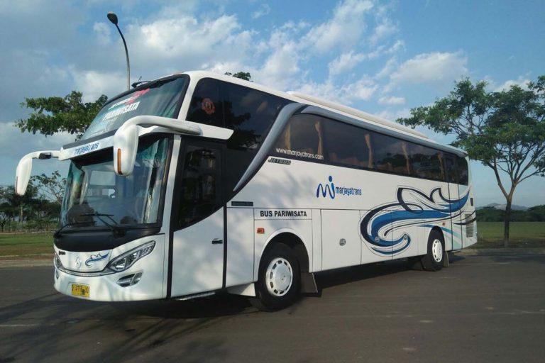 Big Bus SHD Marjaya Trans