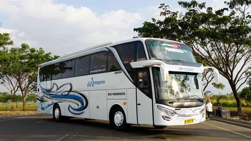 Bus Bagus di Bandung 4.96/5 (27)