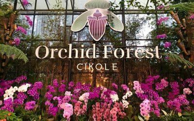 Orchid Forest Bandung, Tempat Wisata dengan Banyak Fasilitas                                        5/5(1)