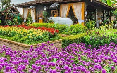 Wisata Instagramable Taman Begonia Bandung                                        5/5(1)