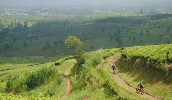 2 Rekomendasi Rute Sepeda Di Bandung                                        5/5(2)